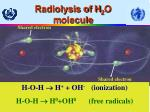 radiolysis of h 2 o m olecule