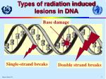 types of radiation induced lesions in dna
