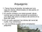 arquegonio