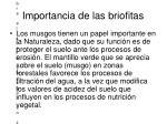 importancia de las briofitas