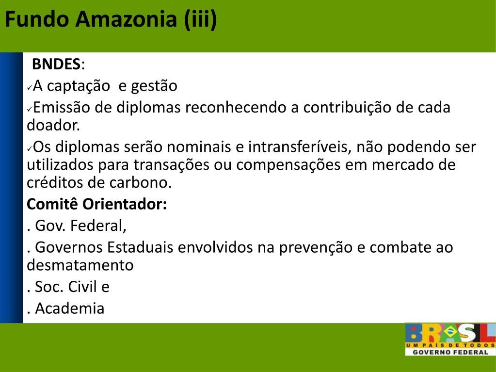 Fundo Amazonia (iii)