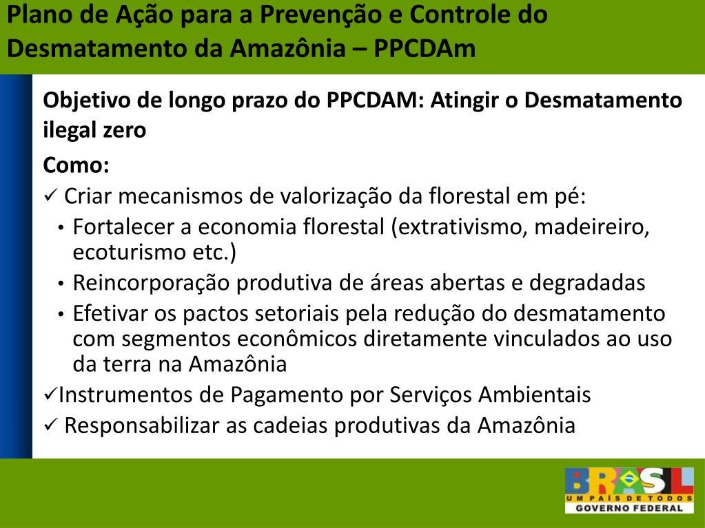 Plano de Ação para a Prevenção e Controle do