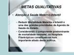 metas qualitativas20