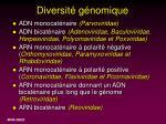 diversit g nomique