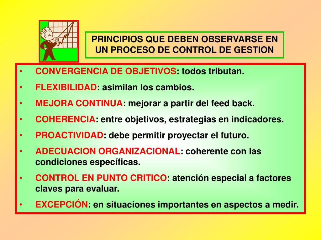 PRINCIPIOS QUE DEBEN OBSERVARSE EN UN PROCESO DE CONTROL DE GESTION