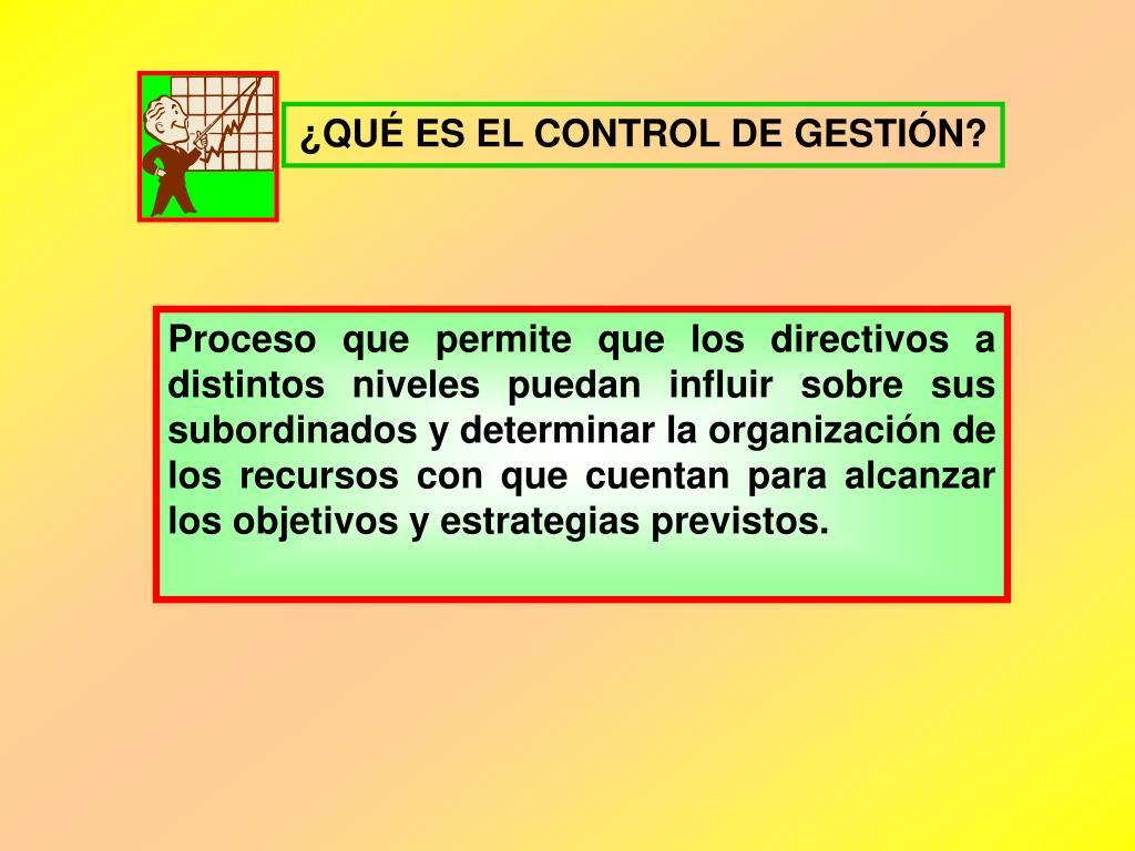 ¿QUÉ ES EL CONTROL DE GESTIÓN?