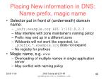 placing new information in dns name prefix magic name