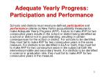 adequate yearly progress participation and performance