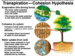 evapotranspiration et