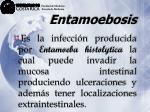 entamoebosis7
