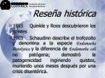 rese a hist rica13