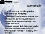 transmisi n39
