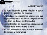 transmisi n40