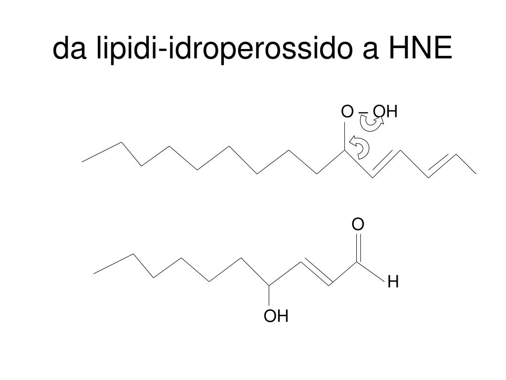 da lipidi-idroperossido a HNE