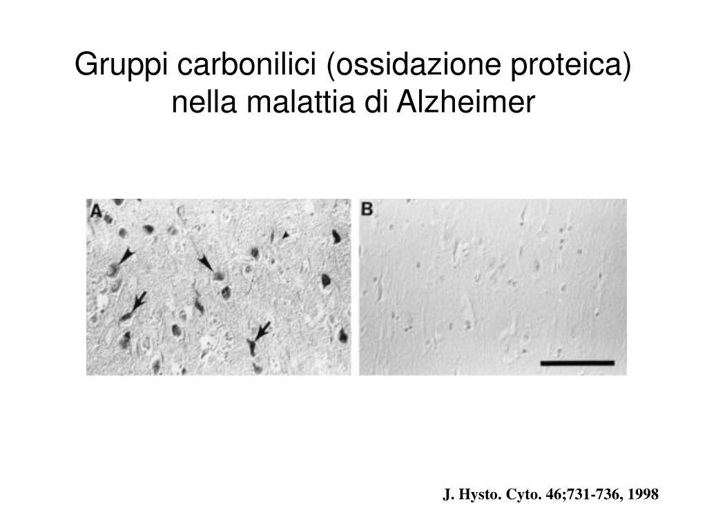 Gruppi carbonilici (ossidazione proteica) nella malattia di Alzheimer