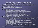 summary and challenges