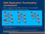 dna replication proofreading mechanisms