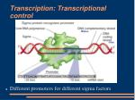 transcription transcriptional control