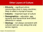 other layers of culture