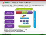 sistema de gesti n por procesos
