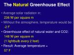 the natural greenhouse effect23