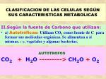 clasificacion de las celulas seg n sus caracteristicas metabolicas27