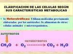 clasificacion de las celulas seg n sus caracteristicas metabolicas28