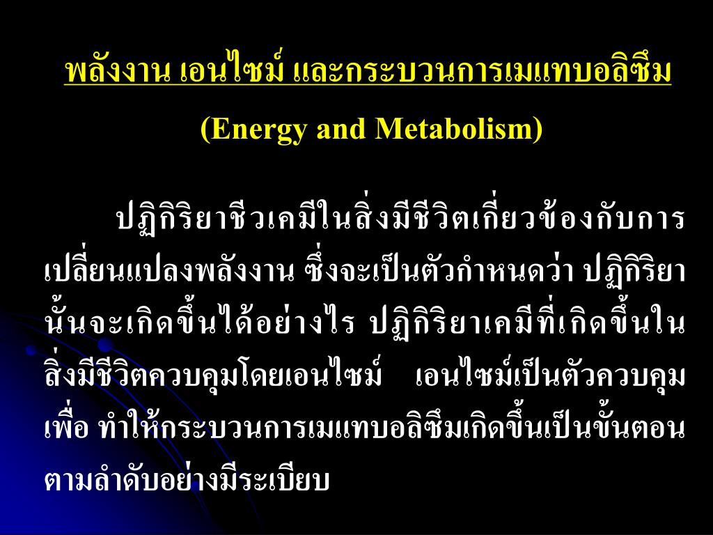 energy and metabolism l.
