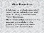 minor determinants