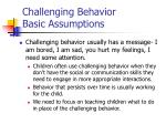 challenging behavior basic assumptions