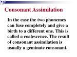 consonant assimilation