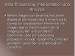 data processing interpretation and analysis33