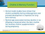 choline memory function