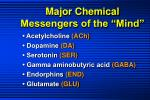major chemical messengers of the mind