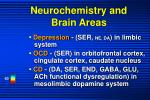 neurochemistry and brain areas
