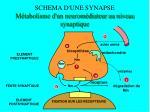 schema d une synapse m tabolisme d un neurom diateur au niveau synaptique