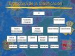 estructura de la clasificaci n29