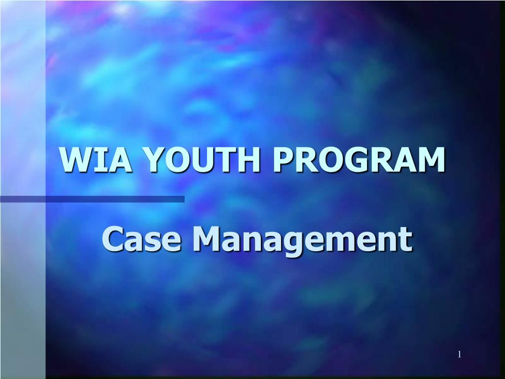 wia youth program l.