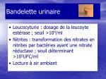 bandelette urinaire6