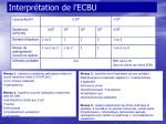 interpr tation de l ecbu