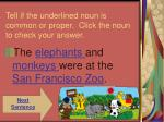 tell if the underlined noun is common or proper click the noun to check your answer10