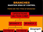branches maintain span of control