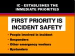 ic establishes the immediate priorities