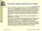 overview of the court process notes