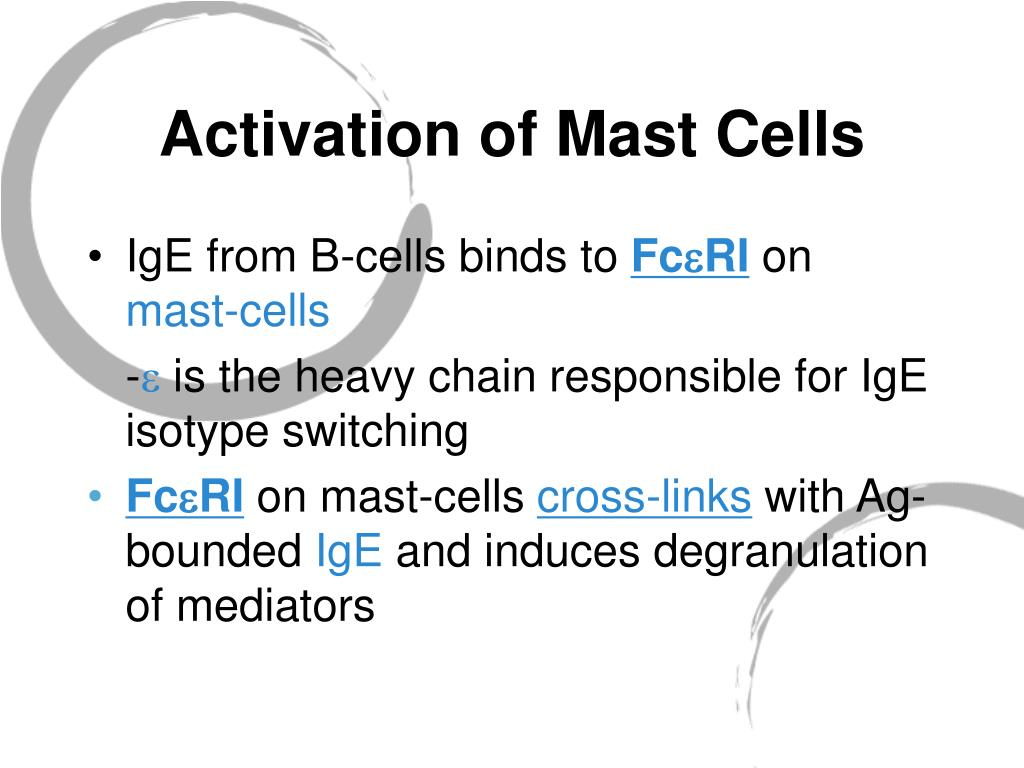 Activation of Mast Cells