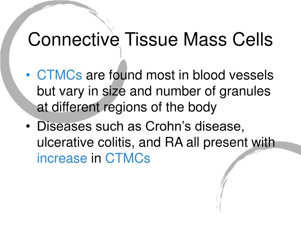 Connective Tissue Mass Cells