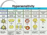 hypersensitivity7