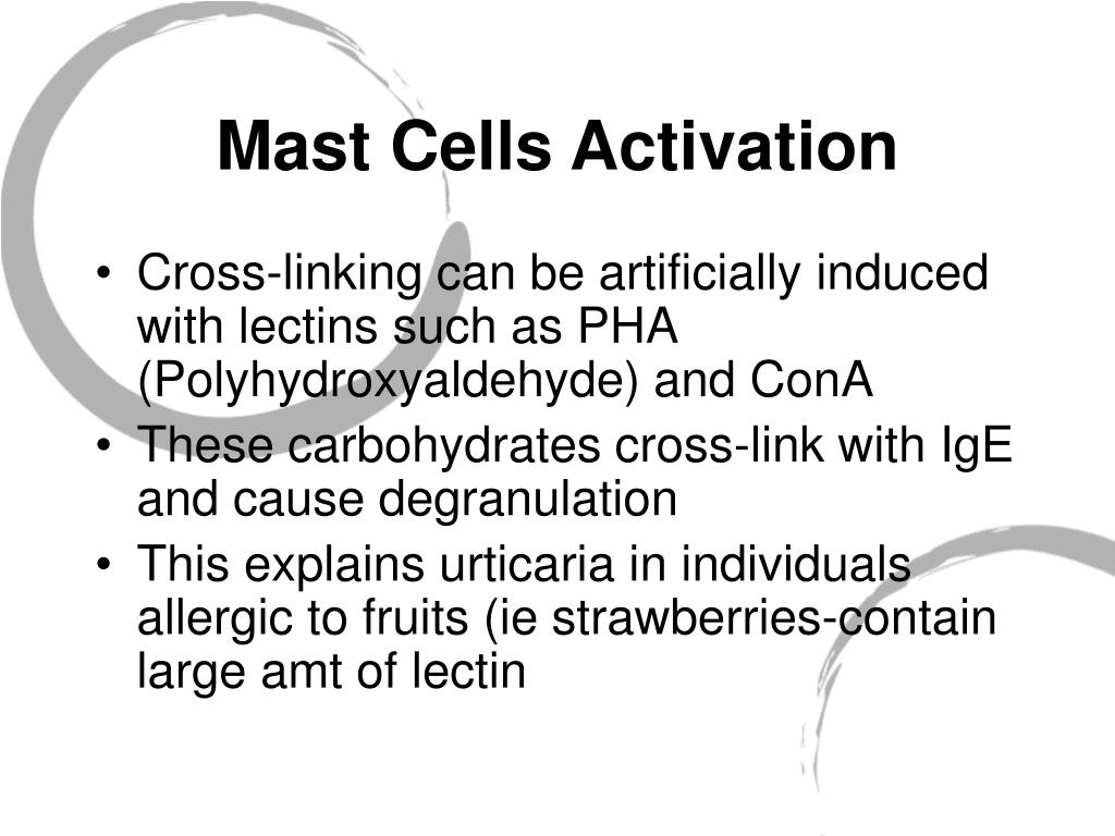 Mast Cells Activation