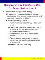 metaphor 2 the family is a res exchange system cont