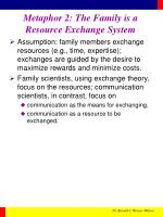 metaphor 2 the family is a resource exchange system